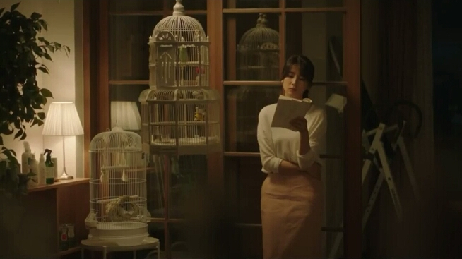 Birds scene in love affairs in the afternoon drama