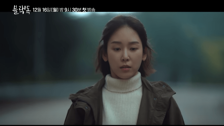 Korean Drama Black Dog Seo Hyun-Jin